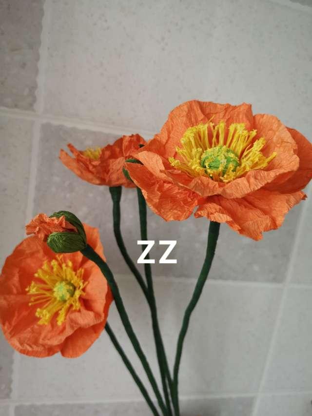 皱纹纸做的罂粟花