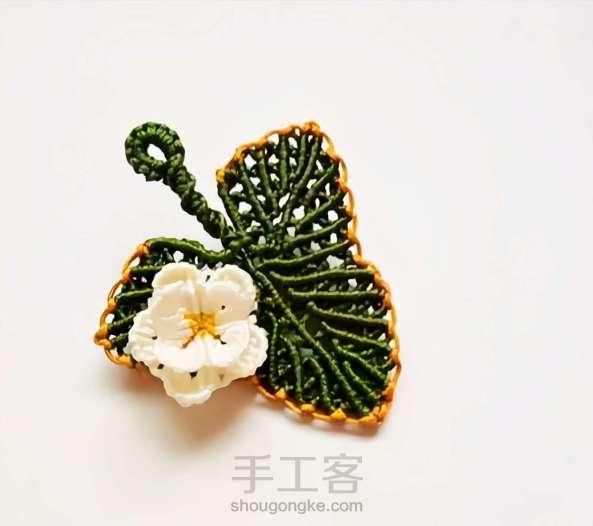 编织藤蔓叶子
