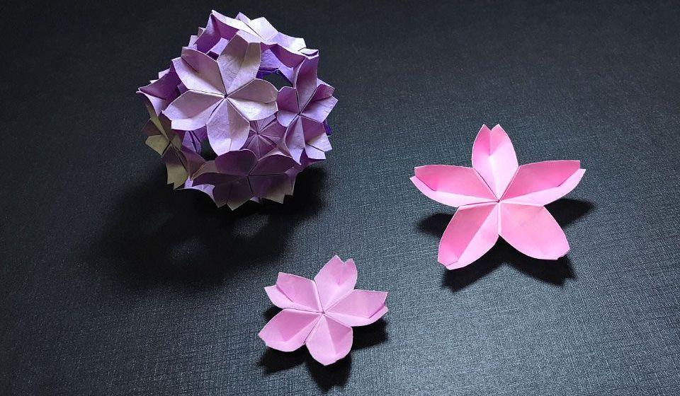 春暖花开,来折樱花和樱花花球吧