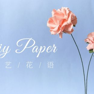手工DIY纸艺,花艺,用纸制作漂亮的康乃馨——《纸艺花语》