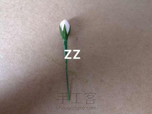 皱纹纸锦带花制作方法 第12步
