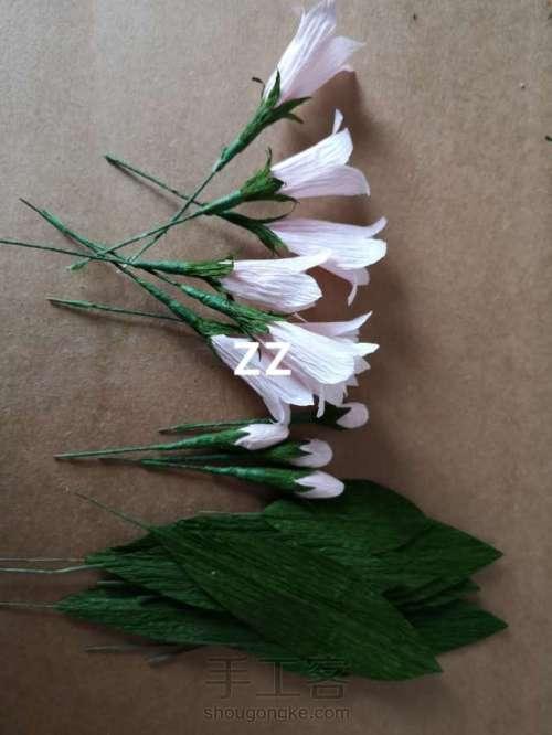皱纹纸锦带花制作方法 第15步