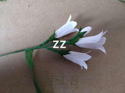皱纹纸锦带花制作方法 第17步