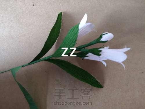 皱纹纸锦带花制作方法 第18步