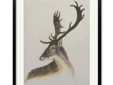 【油画棒】——《麋鹿》